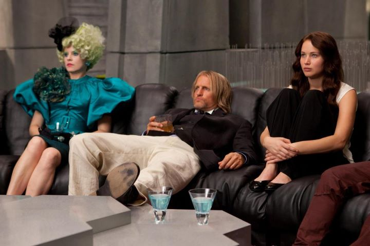 Team Katniss: Collaborative Success in The Hunger Games