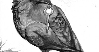 """Illustration for """"Crow Bait and Switch"""" by Tish Pahl"""